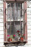 Window with flowers  of the Old Turkish House — Stockfoto