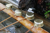 Shinto shrine purification basin — Stock Photo