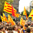 Stock Photo: Catalseparatist protest in Barcelona