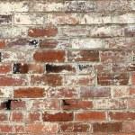 Old brick wall — Stock Photo #13119752