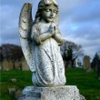 Cherub on grave - Stock Photo