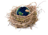 Planet earth safe in a nest — Stock Photo
