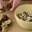 Wild mushrooms are cleaned with a knife and cut into small pieces in a bowl. — Stock Video