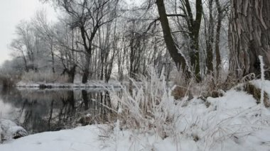 Winter landscape at Havel River (Brandenburg - Germany) — Stok video