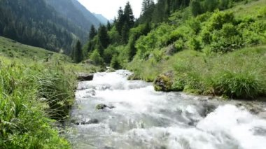 Stream water and landscape of Schwarzach Valley at Zillertal Alps — Stock Video