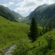 Zillertal Alps time-lapse of stream water — Stock Video