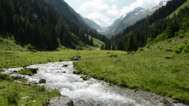 Stream water and landsape of Schwarzach Valley at Zillertal Alps — Stock Video