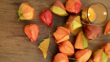 Sorting autumn decoration as tea light and bladder cherry on a table. — Vídeo de stock
