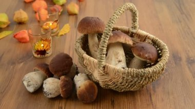 Basket with penny bun mushrooms with autumn decoration. Rack focus — Stock Video