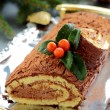 Christmas log — Stockfoto #13659599