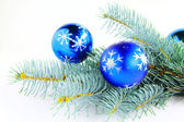 Branch of a blue spruce with blue ornaments. — Stock Photo