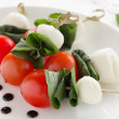 Caprese Salad. — Stock Photo #22600903