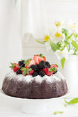 Chocolate cake with berries. — Stock Photo