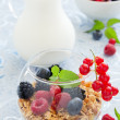 Breakfast - muesli with berries, milk, selective focus. — Stock Photo #30249399