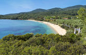 Scenic beach at Halkidiki in Greece — Stock Photo