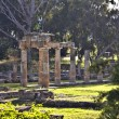 Stock Photo: Temple of Artemis of Vravronat Attica, Greece