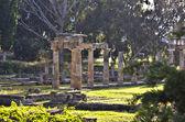 храм артемиды враврона в аттика, греция — Стоковое фото