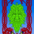 Irish mythical Green man — Stock Photo #13344712