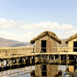 Foto Stock: Thatched cottage lake settlement