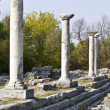 Archaeological site at Filipois area in Greece — Stock Photo