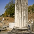 Fillipous area archaeological site at North Greece — Stock Photo