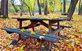 Wooden table and bench in a forest at fall — Stock Photo