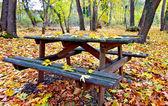 деревянный стол и скамейки в лесу на осень — Стоковое фото