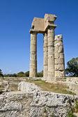 Tempel apollo på rhodos i grekland — Stockfoto