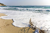 Armenistis beach at Chalkidiki, Greece — Stock Photo