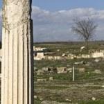 Ancient Pella at Macedonia, Greece — Stock Photo