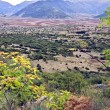 Stock Photo: Arcadimountains in Greece