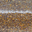 Detail image from a beach — Stock Photo #48508987