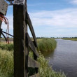 Stock Video: Dutch landscape with canal