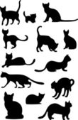 Cats silhouette — Stock Vector
