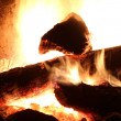 log fire — Stock Photo