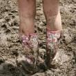 Glastonbury wellies — Stock Photo