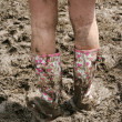 Glastonbury wellies - Stock Photo