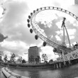 Foto Stock: Fisheye london eye
