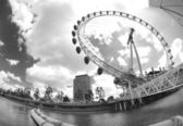 Fisheye london eye — Stock Photo