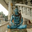 Shiva statue - Stock Photo