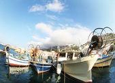 Balıkgözü tekneler — Stok fotoğraf
