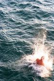 Man in sea — Stock Photo