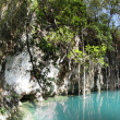 Mexican Cenote, Sinkhole — Stock Photo
