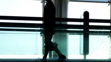 Airport rush — Stock Video #15805085