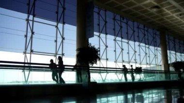 Airport rush — Stock Video #15805117