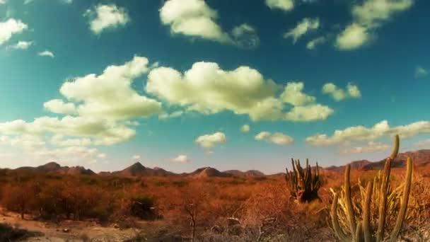 Time-lapse du beau paysage désert de baja california sur, mexico — Vidéo