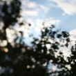 Out of focus bokeh shot of sky and sunshine shining through leaves - Foto Stock