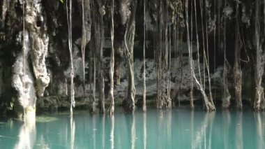 A cenote in mexico — Stock Video
