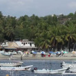 Small fishing boats in the harbour in puerto escondido, mexico — Video