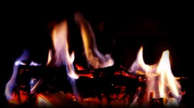 A nice log fire burning in a fireplace — Stock Video